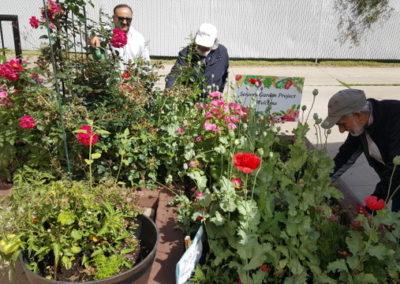 Seniors Intergeneration Garden Project